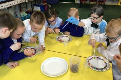 Y1 Mad Science Day