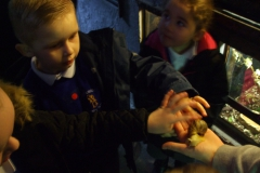 Nursery Pet Mania Visit